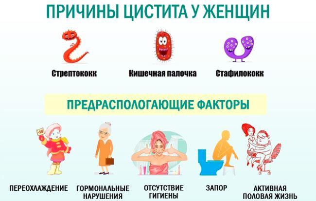 Терапия при цистите у женщин 3