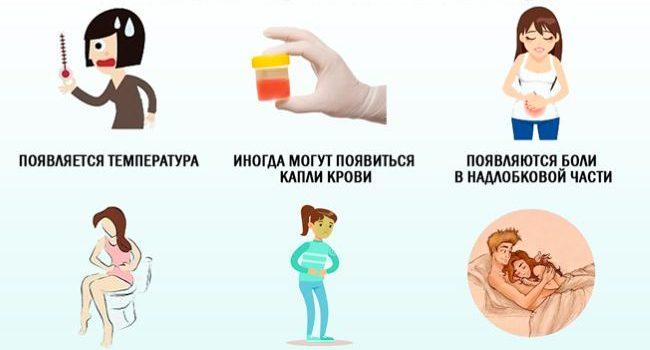 Терапия при цистите у женщин 1