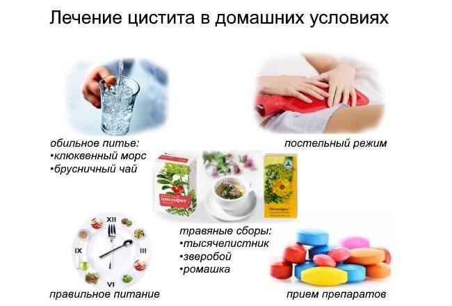 Что можно выпить от цистита в домашних условиях
